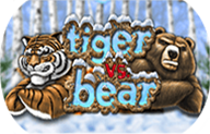 Tiger vs Bear